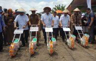 Dukung Gerakan Menanam Jagung, BNI Kucurkan KUR untuk Petani Bengkulu
