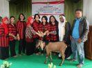 Peringati Harkopnas ke -71, DWP Kemenkop dan UKM Lakukan Bakti Sosial ke Ponpes dan PA Anak Yatim Piatu di Kabupaten Bogor