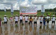 Kawal Musim Tanam 2018/2019, BNI & Kementan Kini Garap Bumi Borneo