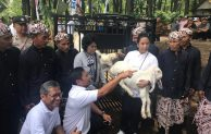 Perhutanan Sosial Jadi Motor Ekonomi Baru di LMDH Wono Lestari Lumajang