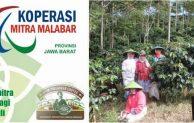 Koperasi Mitra Malabar Jawa Barat Sukses Tembus Pasar Kopi Eropa