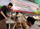 Bank DKI Salurkan Qurban ke 100 Masjid
