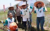 Hadirkan Gerakan Menyongsong Pertanian 4.0, BNI Ajak Petani Terapkan Smartfarming