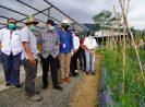 KemenkopUKM Dukung Smesco Ciptakan Inovator Bisnis Berbasis Tanaman Di Loka Hejo