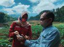 Ujicoba Smartfarming BNI Ditebar di 5 Propinsi
