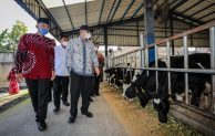 MenkopUKM: SAE Pujon Malang Jadi Pilot Project Modernisasi Koperasi Pangan