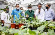 MenKopUKM Dukung Minaqu dan Koperasi Garap Potensi Pasar Tanaman Hias Dunia Sebesar Rp3.000 Triliun